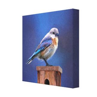 Bluebird (Female) Painting - Original Bird Art Canvas Print