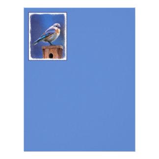 Bluebird (Female) Painting - Original Bird Art Letterhead