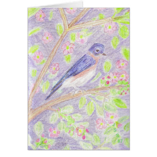 Bluebird in Apple Tree Notecards and Postage Note Card