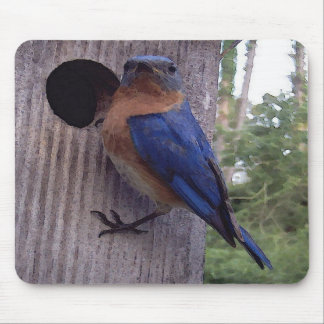 Bluebird Nest Box Mousepad