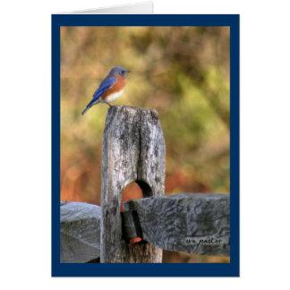 Bluebird of Happiness ~ Art Mooney Card