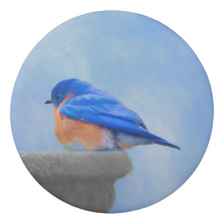 Bluebird Painting - Original Bird Art Eraser