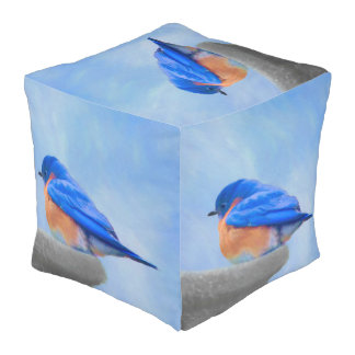 Bluebird Painting - Original Bird Art Pouf