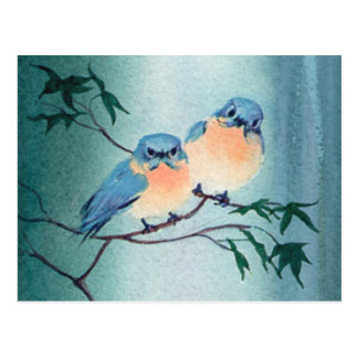 BLUEBIRD PAIR by SHARON SHARPE Postcard
