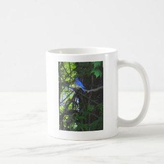 Bluebird photo mug 2