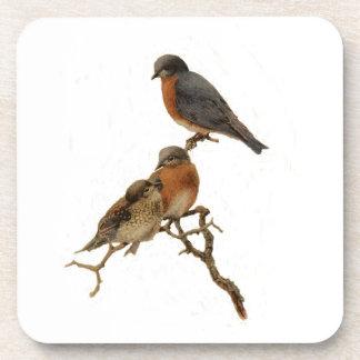 Bluebirds Family Coasters