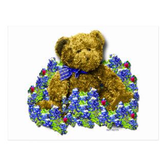 Bluebonnet Bear Postcard