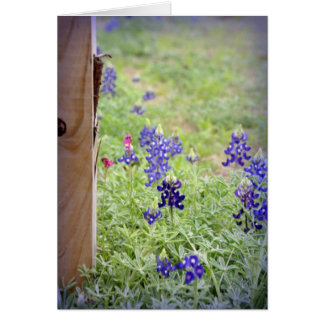 Bluebonnet Fence Card