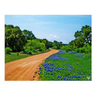 Bluebonnet Road, Willow City Loop, TX Postcard