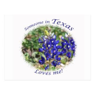 "Bluebonnet ""Someone in Texas Loves Me"" Postcard"
