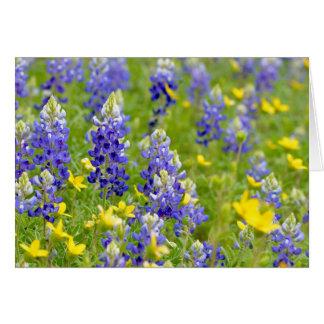 Bluebonnet Spring Card