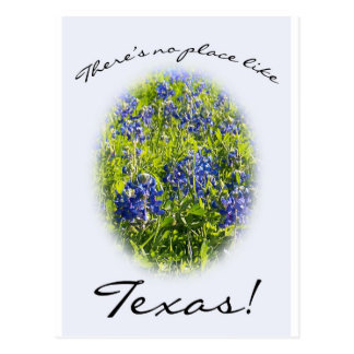 """Bluebonnet """"There's No Place Like Texas"""" Postcard"""