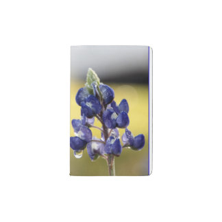 Bluebonnet with Dewdrops Pocket Journal