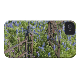 Bluebonnets and phlox surrounding cemetery gate Case-Mate iPhone 4 case