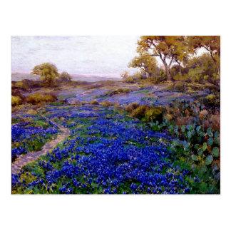 Bluebonnets at Twilight, North of San Antonio Postcard