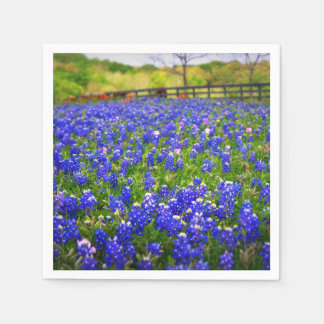 Bluebonnets in Texas Paper Napkin