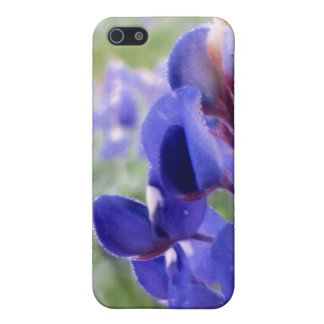 Bluebonnets - iPhone 4 Speck iPhone 5 Cover