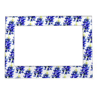 Bluebonnets Magnetic Frame