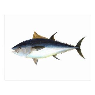 Bluefin Tuna Postcard