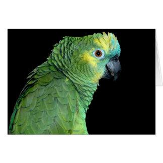 Bluefront Amazon Parrot Notecard