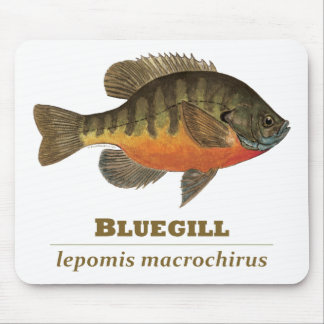 Bluegill Bream Fishing Mouse Pad