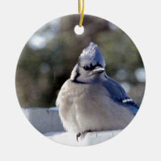 Bluejay Ceramic Ornament