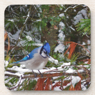 BlueJay Coasters