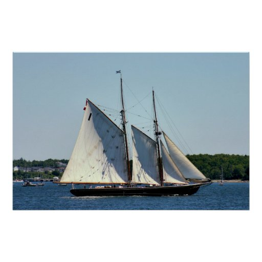 Bluenose Ii Schooner Poster Zazzle Ca