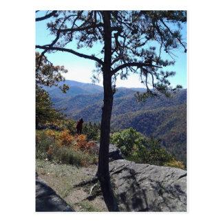 Blueridge Parkway, Virginia Postcard
