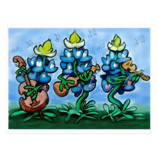 Blues Bonnets Postcard