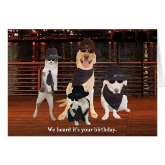 Blues Brothers Dogs & Cats Card