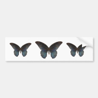BlueSwallowTail Butterfly Bumper Sticker
