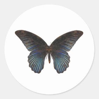 BlueSwallowTail Butterfly Round Sticker