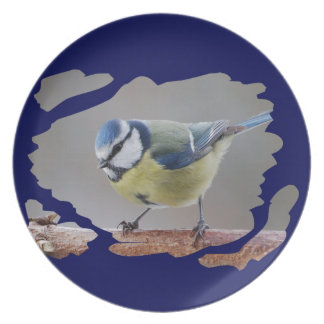 BLUETIT BLUE TIT photo: Jean Louis Glineur Dinner Plate