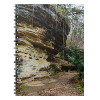 Bluff Lined Walkway Spiral Notebook