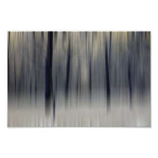 Blurred Wintry Wood Poster