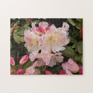 Blush Pink Rhododendrons Floral Photo Jigsaw Puzzle