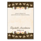 Blush String of Lights Fall Rustic Tent Place Card