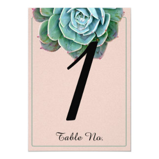 Blush Succulent Wedding Table Number Card