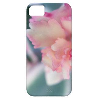 BlushedPink iPhone 5 Case