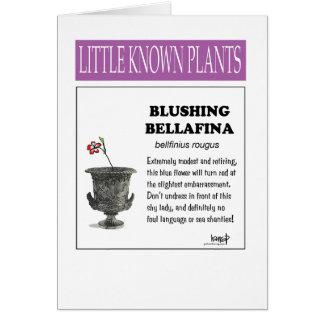 Blushing Bellafina Card