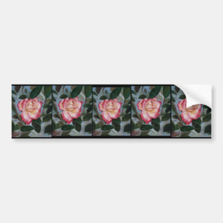 Blushing Delight Rose Bumper Sticker