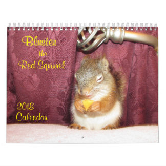 Bluster the Red Squirrel 2018 Calendar