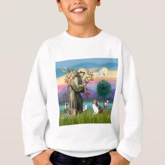 Bndr-StFrancis-Sheltie-Leah-nocat Sweatshirt