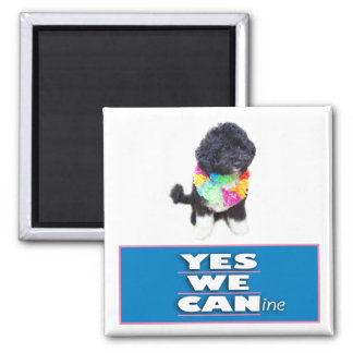 BO Obama YES WE CANine Magnet, square Magnet