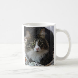 Boa Cat Coffee Mug