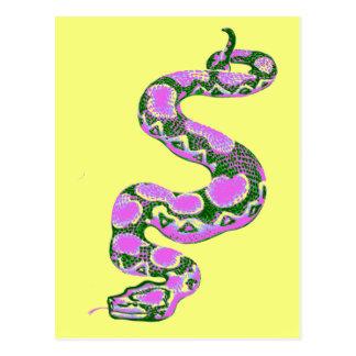 Boa Constrictor Pop Art Postcard