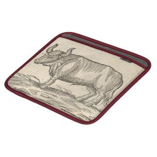 Boar & Ox iPad Sleeves