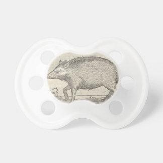 Boar Pacifier