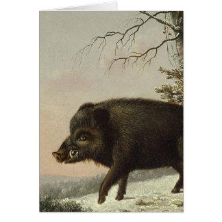 Boar Pig Vintage German Painting Card